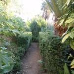 Alboretum Trsteno